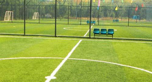 酒仙桥UCP体育中心